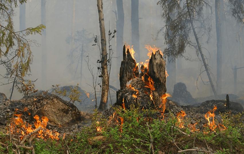 Spanje: bosbrand op een haar gemist